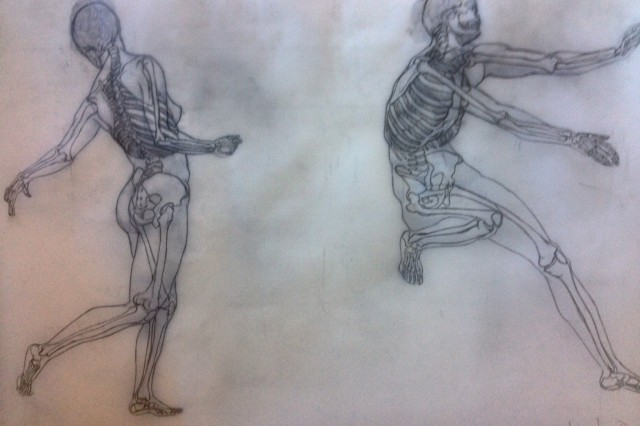 Figure Drawing Anatomy