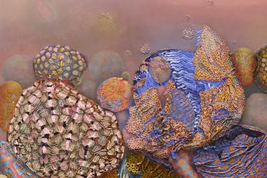 Melissa Gwyn: Fabergenic