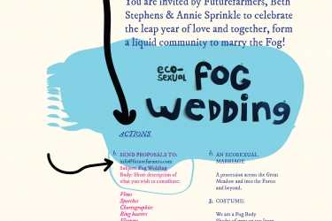 Fog Wedding
