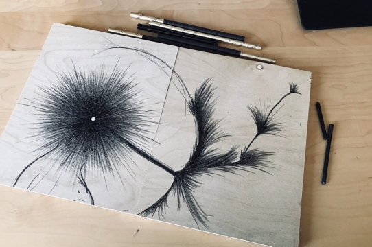 A work in progress by Chloe Calhoun