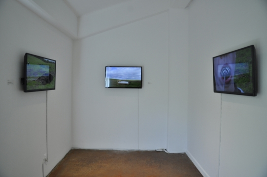 Environmental Art Installation by Sophie Lev