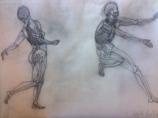 Figure Drawing Anatomy